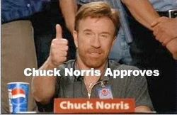 Chuck-Norris-Thumbs-Up-Meme-17.jpg
